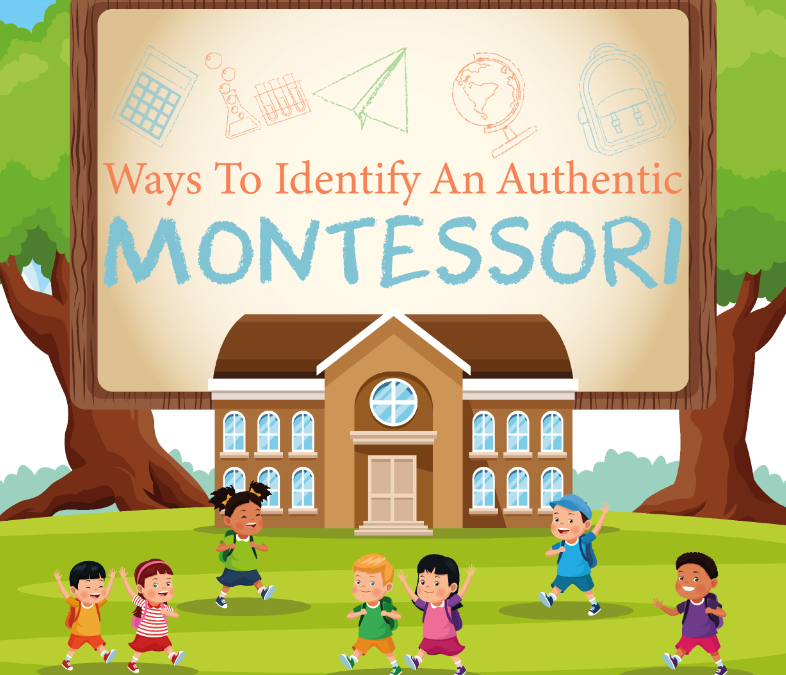 Ways To Identify An Authentic MONTESSORI